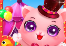 Reviews on Pet Fairground Game for Kids
